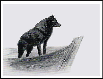 Schipperke In A Boat Lovely Vintage Style Dog Art Print Poster