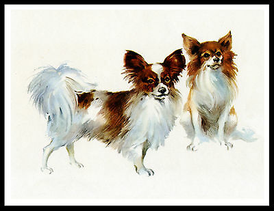 Papillon Two Cute Dogs Great Vintage Style Dog Art Print Poster