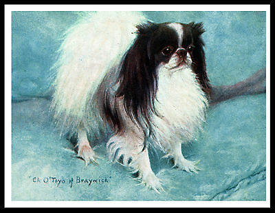 Japanese Chin Named Early Champion Lovely Vintage Style Dog Art Print Poster