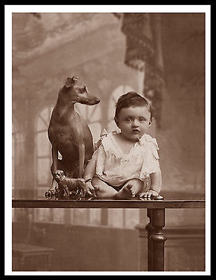 Italian Greyhoundand Baby Lovely Vintage Style Dog Photo Print Poster