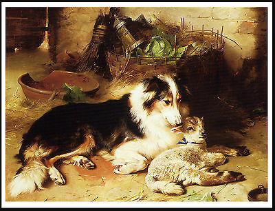 Border Collie And Lambs Charming Vintage Style Dog Art Print Poster