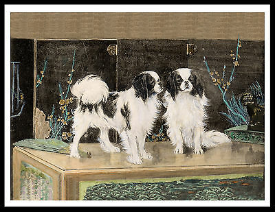 Japanese Chin Two Dogs Lovely Vintage Style Dog Art Print Poster
