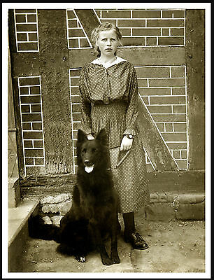 Belgian Shepherd Dog And Girl Lovely Vintage Style Image Dog Print Poster