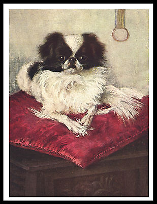 Japanese Chin On A Red Cushion Lovely Vintage Style Dog Art Print Poster