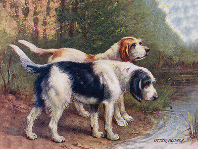 Otterhound Charming Dog Greetings Note Card, Two Dogs In Scenic Setting