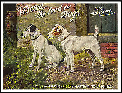 Jack Russell And Smooth Fox Terrier Vintage Style Dog Food Advert Print Poster