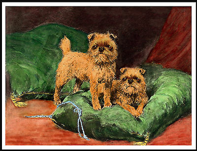 Brussels Griffon Dogs On A Green Cushion Lovely Vintage Style Dog Print Poster