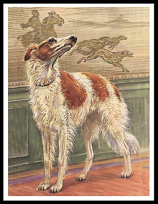 BORZOI DOGS AND RABBIT ESCAPED DOWN HOLE VINTAGE STYLE IMAGE DOG PRINT POSTER