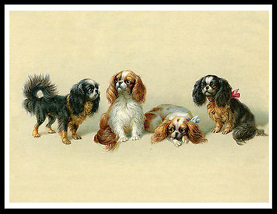 Cavalier King Charles Toy Spaniel Dogs Lovely Vintage Style Dog Art Print Poster