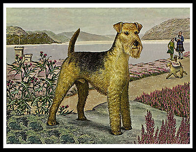 Lakeland Terrier Lovely Vintage Style Dog Art Print Poster