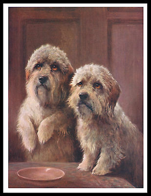 Dandie Dinmont Terrier Two Dogs Lovely Vintage Style Dog Art Print Poster