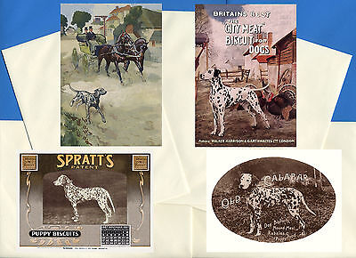 Dalmatian Pack Of 4 Vintage Style Dog Print Greetings Note Cards #3