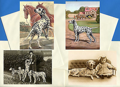 Dalmatian Pack Of 4 Vintage Style Dog Print Greetings Note Cards #2