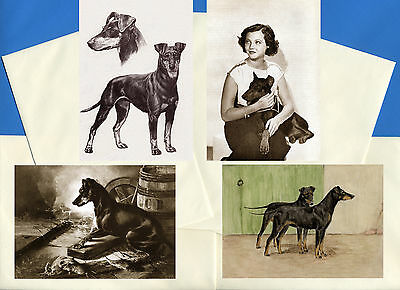Manchester Terrier Pack Of 4 Vintage Style Dog Print Greetings Note Cards