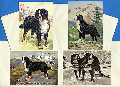 Bernese Mountain Dog Pack Of 4 Vintage Style Dog Print Greetings Note Cards