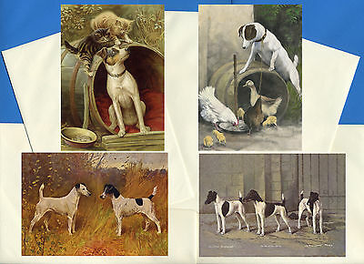 Smooth Fox Jack Russel Terrier 4 Vintage Style Dog Print Greetings Note Cards #1