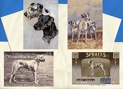 Great Dane Pack Of 4 Vintage Style Dog Print Greetings Note Cards #2