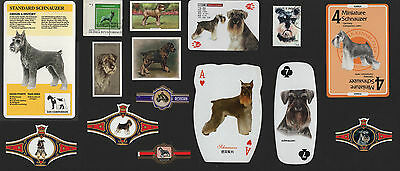 15 Original Schnauzer Collectable Dog Cigarette Trade Cards Stamps And Bands