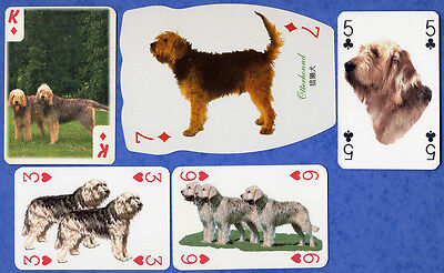Otterhound Dog Playing Swap Single Cards Great Gift When framed