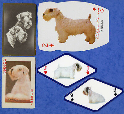 Sealyham Terrier Dog Selection Playing Swap Single Cards Great Gift When Framed