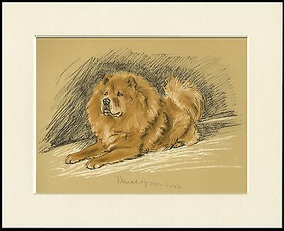 Chow Chow Named Dog Lovely Art Print Mounted Ready To Frame