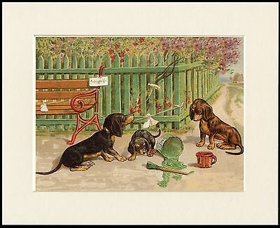 Dachshund Naughty Dogs And Green Paint Lovely Dog Print Mounted Ready To Frame