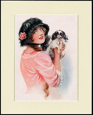 Japanese Chin And Lady In A Pink Dress Charming Dog Print Mounted Ready To Frame
