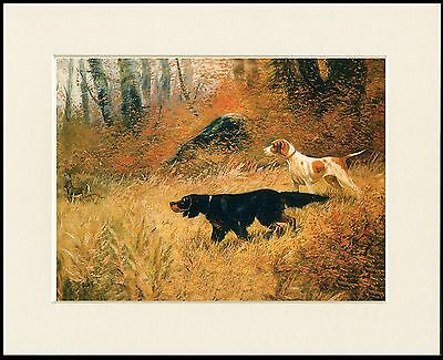 Gordon Setter Pointer Dog & Hare Great Little Dog Print Mounted Ready To Frame