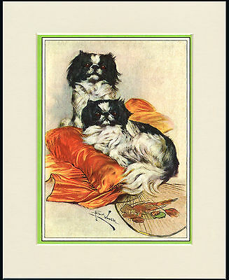 Japanese Chin Dogs And Fan Lovely Dog Print Mounted Ready To Frame