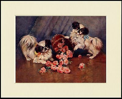 Japanese Chin Two Dogs And A Basket Of Flowers Dog Print Mounted Ready To Frame