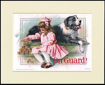 Newfoundland Dog Little Girl In Pink Dress Charming Print Mounted Ready To Frame