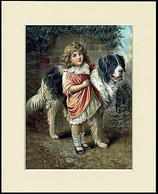 Newfoundland Little Girl And Dog Lovely Old Style Print Mounted Ready To Frame