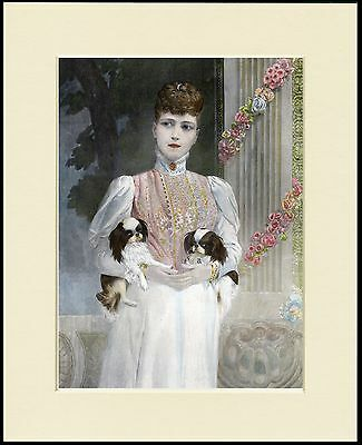 Japanese Chin Queen Alexandra And Her Dogs Dog Print Mounted Ready To Frame