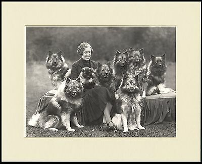 Keeshond Lady And Her Dogs Lovely Dog Photo Print Mounted Ready To Frame