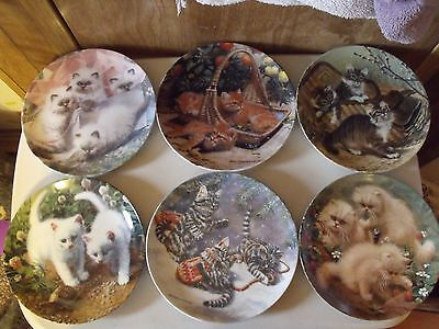 6 AMY BRACKENBERRY COLLECTIBLE PLATES - with COA