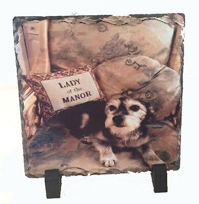 Personalised Photo Slate For Pets Dog,cats Comes With Stands And Free P&p.