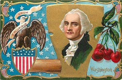 Patriotic~George Washington Portrait~Ax~Cherries~Eagle~Flag Shield~Gold~Emb~Nash