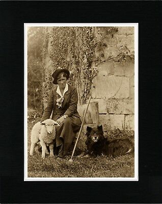Shepherdess Lamb And Border Collie Lovely Old Style Dog Photo Print Ready Matted