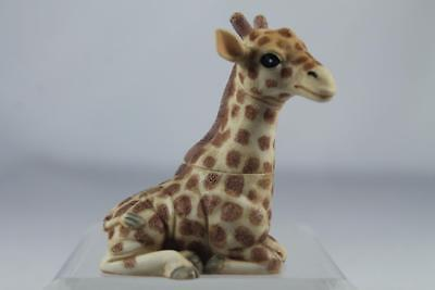 Harmony Kingdom Ball Pot Bellys / Belly 'Stretch'-Giraffe #PBZGI2 Ret New In Box