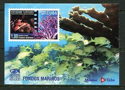 Thematic 2011 Tourism. Marine National park MS MNH