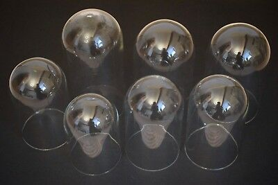 Vintage Anniversary/ Torsion Clock/ Display/ Taxidermy Glass Domes