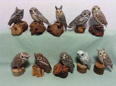 Collection Of 10 Different Small Owls Hand Carved & Painted On Piece Of Wood Lot