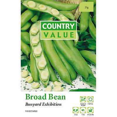 Country Value Bunyard Exhibition Broad Bean Vegetable Seeds