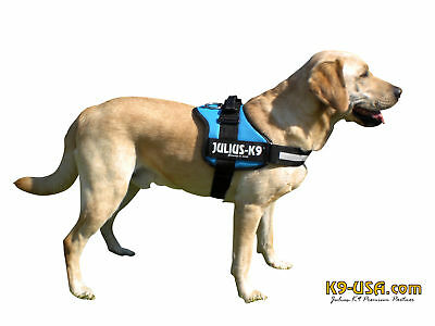 Julius K9 Powergeschirre Hundegeschirr -aquamarine-