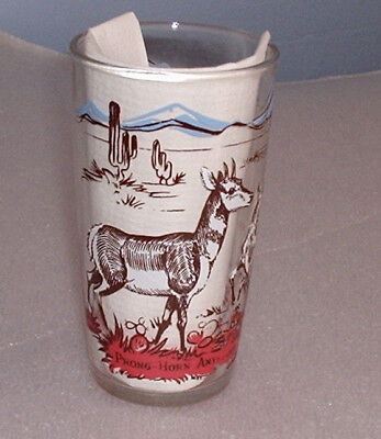 Vintage Prong-Horn Antelope Peanut Butter Glass Drinking Tumbler Animal