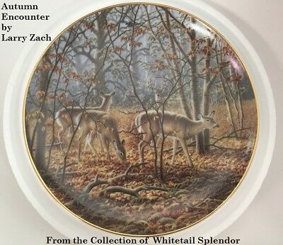 AUTUMN ENCOUNTER Collectors Plate by Larry Zach Mint New