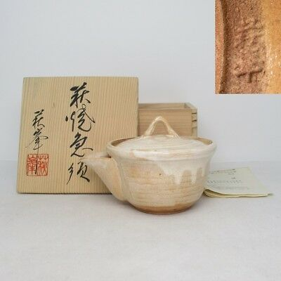 H060: Japanese HAGI pottery teapot for green tea SENCHA by Shuho kiln w/box