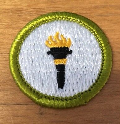 Boy Scouts Public Health Merit Badge Type H  New