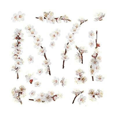 26 dogwood flowers wall decals white flowers stickers floral tree white dogwood flowers 26 wall decals floral branch home decor stickers new mightylinksfo