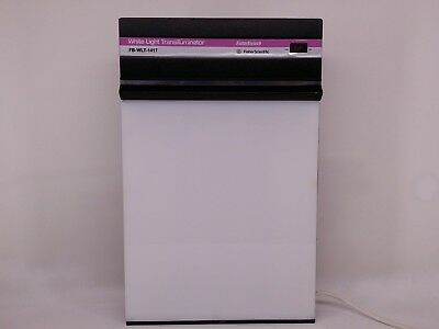 Fisherbiotech Fisher Scientific White Light Transilluminator Fb-Wlt-1417